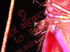 Galerie BD1328-0321.jpg anzeigen.