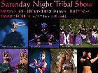 Galerie 2018-06-02 BD1457 Tribal Festival Saturday Night Gala Show anzeigen.