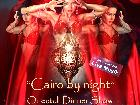 Galerie 2018-07-21 BD1463 Oriental Dinner Show Cairo by Night Nuernberg anzeigen.