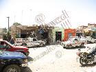 Galerie 2010 LD58 Egypt Oasis Bahariya & Sunset & Musician anzeigen.