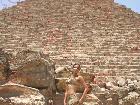 Galerie Tabiba Set Pyramids Cairo 2008 anzeigen.